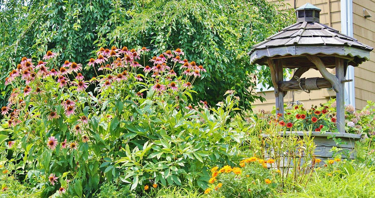 garden-602035_1280